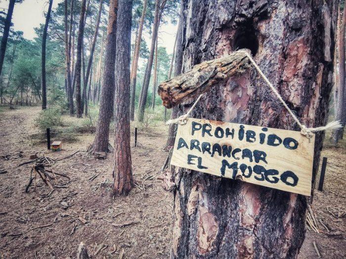 PROHIBIDO ARRANCAR EL MUSGO