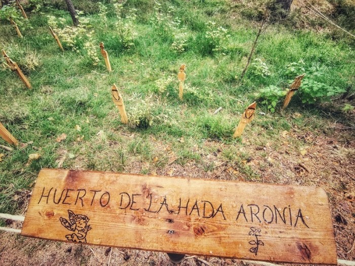HUERTO DEL HADA ARONIA