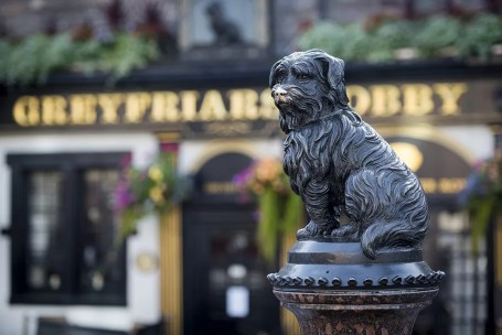 Statue of greyfriars bobby in Edinburgh