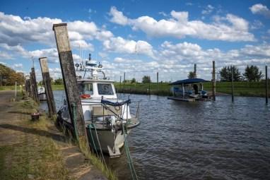 Haven van Antwerpen - Lillo