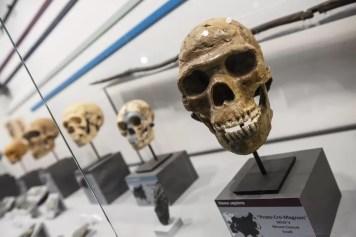 Viroinval - Musée du Malgré-tout