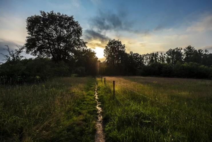 Wat te doen in Limburg - Grenspark Kempen~Broek