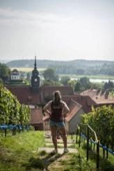 Fietsen langs de Elbe - Weinreich Seusslitz