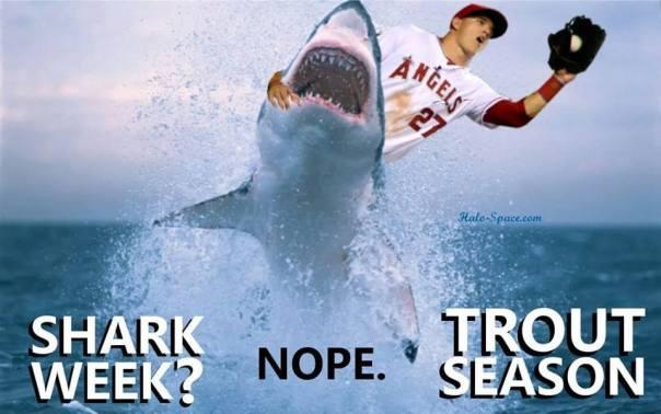 sharkweektroutseason