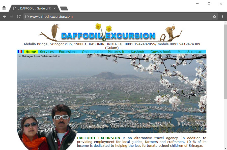 Daffodil Excursion