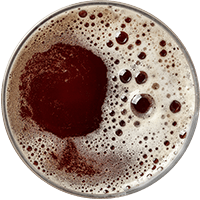 https://i1.wp.com/www.trubblebrewing.com/wp-content/uploads/2017/05/beer_transparent_02.png?fit=200%2C200&ssl=1