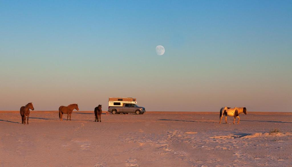 kiel3 - Truck Camper Adventure