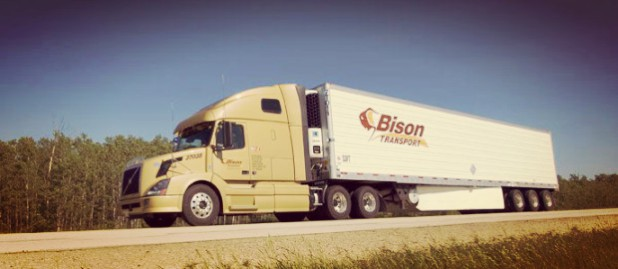 Bison Transport Truck
