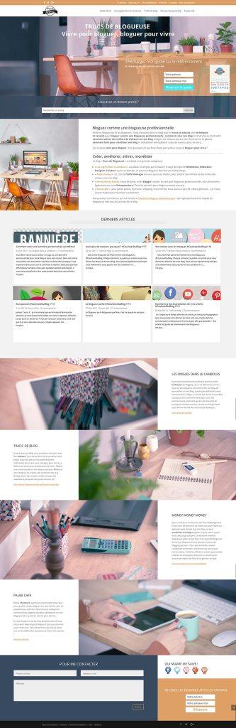 trucs-de-blogueuse-theme-wordpress-choisir