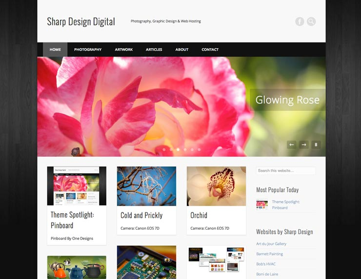 trucs-de-blogueuse-theme-wordpress-feminin-2