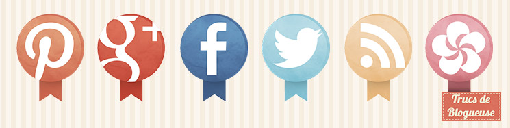 trucs-de-blogueuse-integrer-reseaux-sociaux-blog