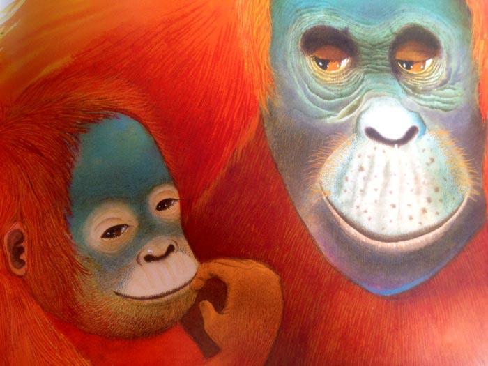 trucs-de-blogueuse---sorryso-singes