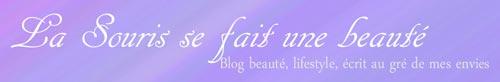 trucs-de-blogueuse---baseline-7