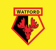 Watford badge - match preview