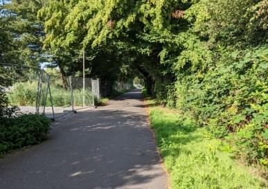 Fahrradstrasse Wilhelmsburg
