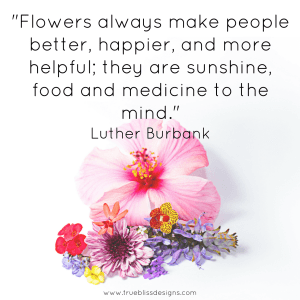 """Flowers always make people better, happier, and more helpful; they are sunshine, food and medicine to the mind."" Luther Burbank quote"