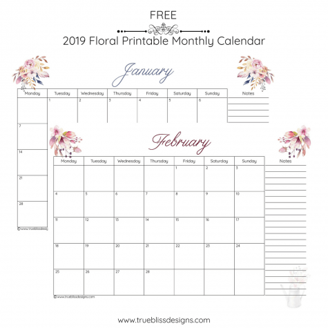 Get organised with this free 2019 floral printable monthly calendar. Each month has a different watercolour design and is available in Letter, A4 and A5 size. For more freebies, visit www.trueblissdesigns.com.
