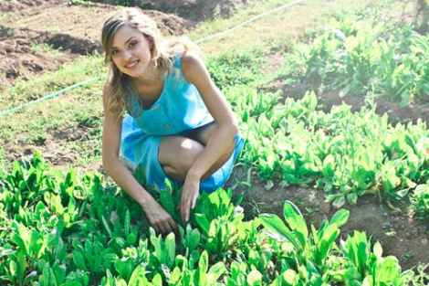 Processed Vegetable plant