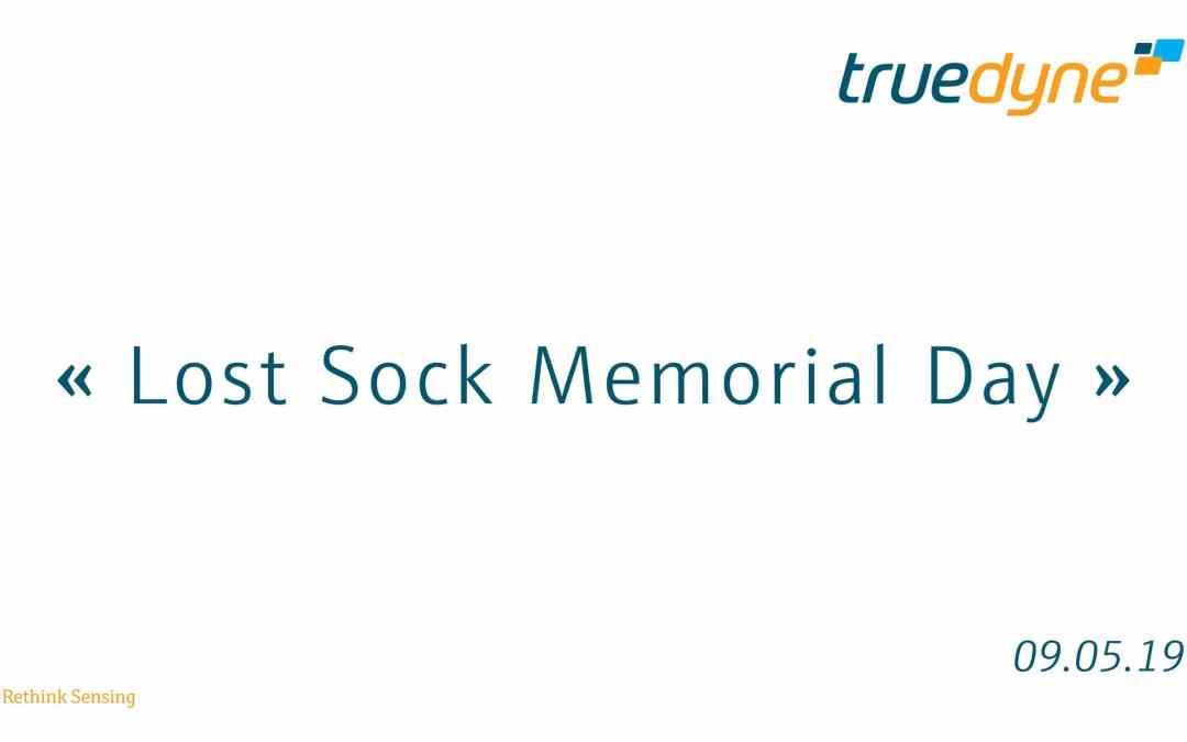 Lost Sock Memorial Day