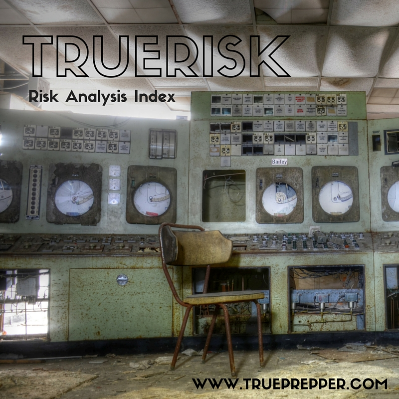 TrueRisk Risk Analysis Index