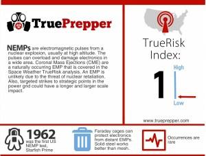 EMP Infographic
