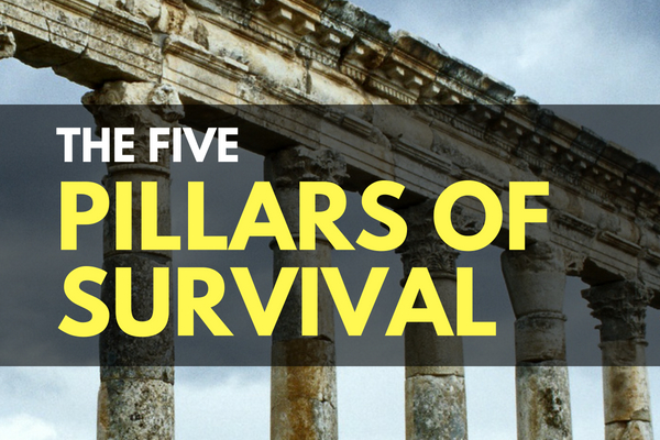 The Five Pillars of Survival