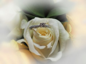 Our signature ring shot