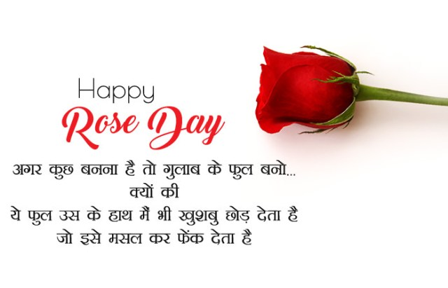 Happy Rose Day Images in Hindi - 7th Feb Happy Rose Day Images with Shayari