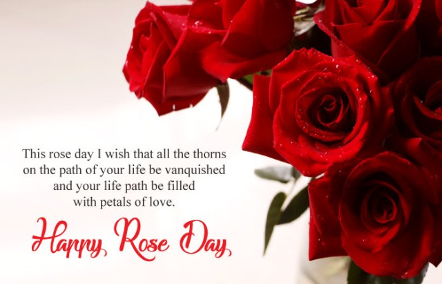 Happy Rose Day Wishes Messages - 7th Feb Happy Rose Day Images with Shayari