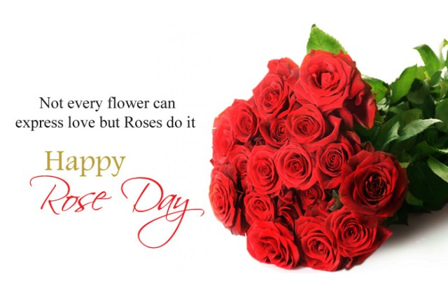 Rose Day Images with Quotes - 7th Feb Happy Rose Day Images with Shayari