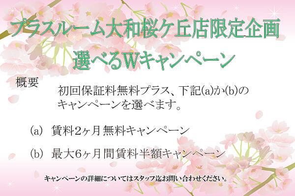 大和桜ケ丘店Wキャンペーン