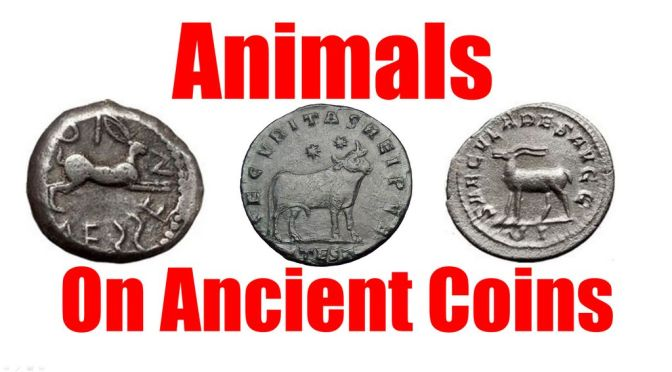 Animals on Ancient Greek and Roman Coins List for Collecting