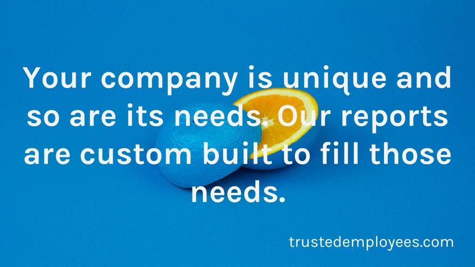 Our background reports are custom built to fit your company's needs.