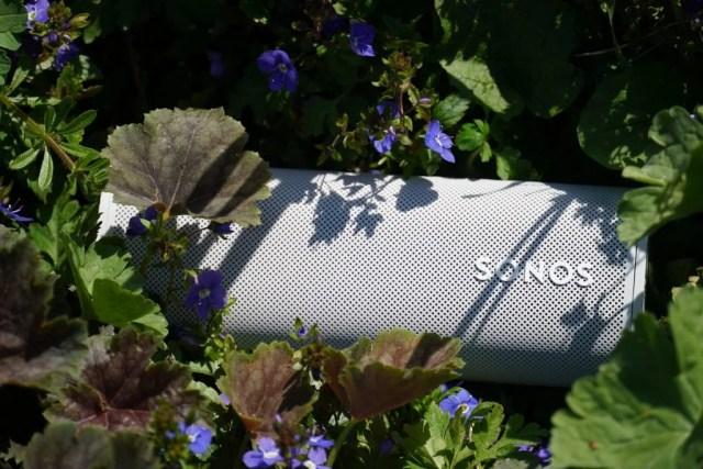 Sonos Roam in garden bed