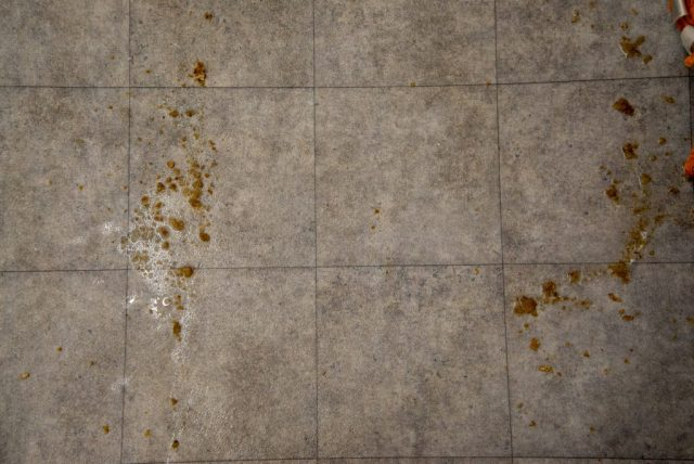 Stihl SE 33 clean wet floor