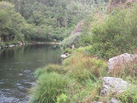 A pesca no Rio Paiva