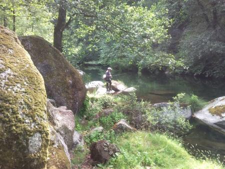 Pesca as trutas Rio Homem Terras do Bouro