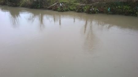 Poluição no Rio Labruja - corrente - Fevereiro 2016