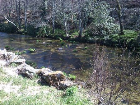 Rio Alfusqueiro Campia corrente Março 2016