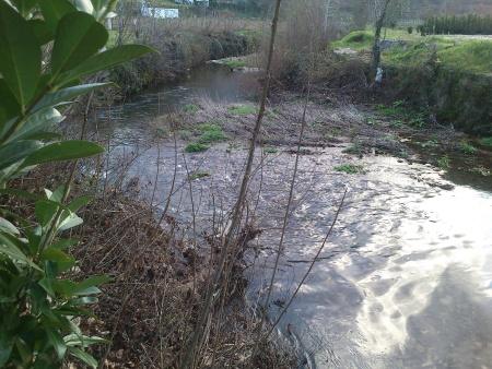 Rio Ovelha Dezembro 2015 caudal