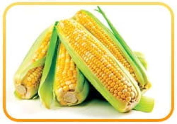 Corn-based foods -- corn syrup, corn cereal, corn chips, corn oil