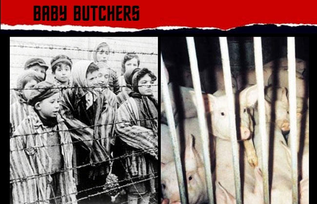 violence against women, peta, fur, Holocaust