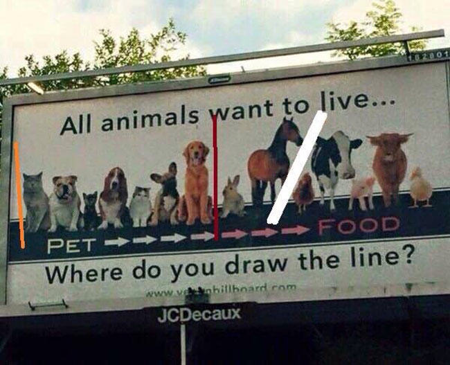 peta, animal rights, fur in the news, fur trade, farming, trapping, seriously stupid, animal rights activists