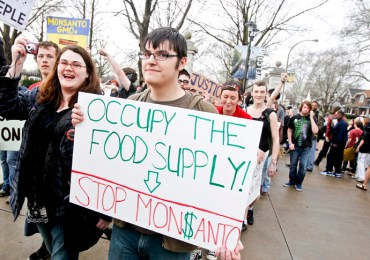 "Members of ""Occupy"" movements in the Midwest protest against Monsanto's agricultural practices in St. Louis"