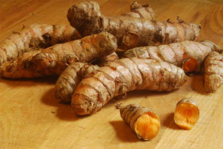 Science Confirms Turmeric