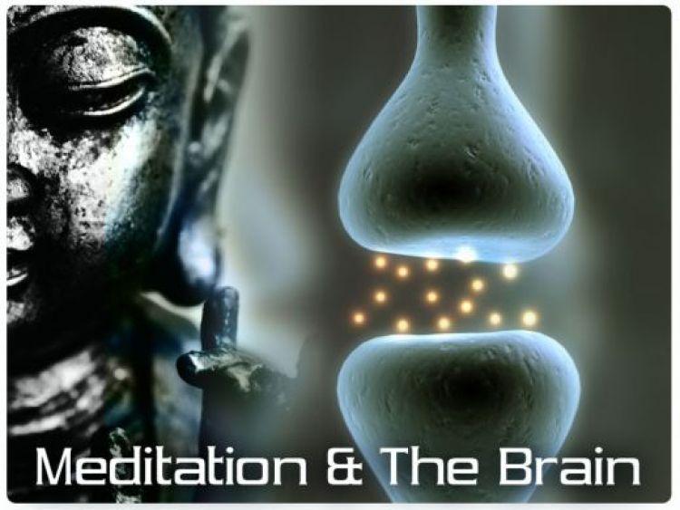 Meditation Change the Human Brain