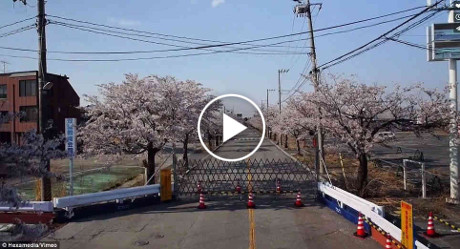 Unmanned-aircraft-drones-footage-from-Fukushima