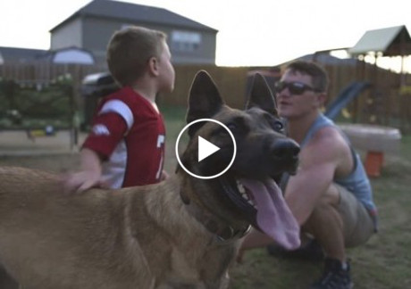 soldier-adopts-dog-that-saved-his-life