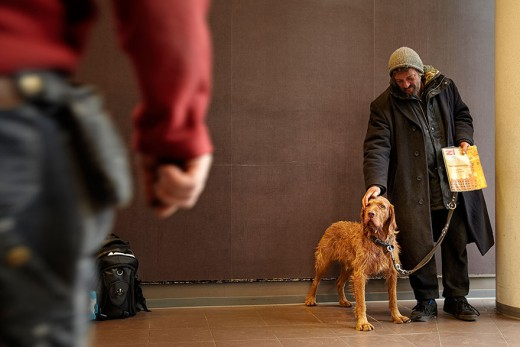 712371_homeless-dogs-and-owners-8