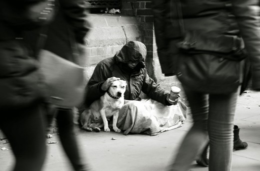 712373_homeless-dogs-and-owners-6